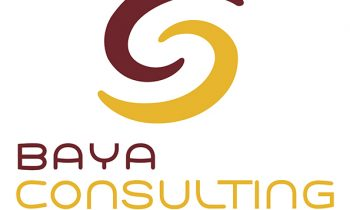 BAYA Consulting : Le portage salarial et l'industrie